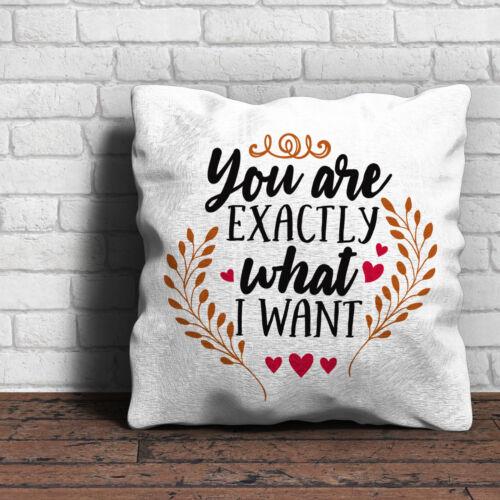 Vous êtes exactement ce que je veux coussin amour-cadeau st-valentin home