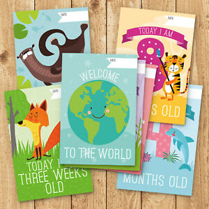 30x-Baby-Milestone-Cards-1st-Year-Memorable-Moments-Boy-Girl-or-Unisex