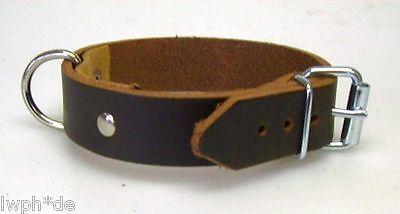 Rollschnalle Fixierungsriemen Halsband 4 Lederriemen dunkelbraun 4,0 x 50,0 cm