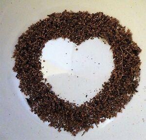 1g-Nettle-Seeds-sprinkle-on-cereal-soup-salad-kidneys-support-food-nutritional