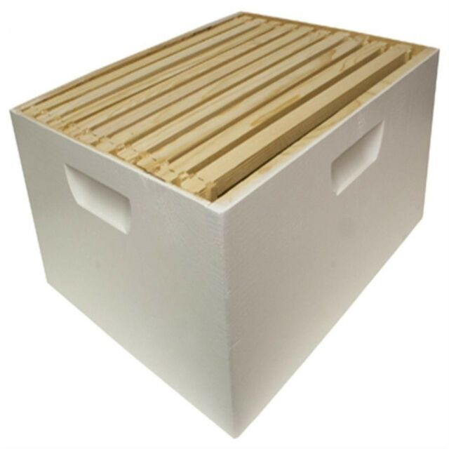 Brood Box Crimped Wired Wax Foundation DEEP 10 Assembled Bee Hive Frame