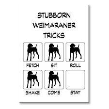 Weimaraner Stubborn Tricks Fridge Magnet Steel Case Funny