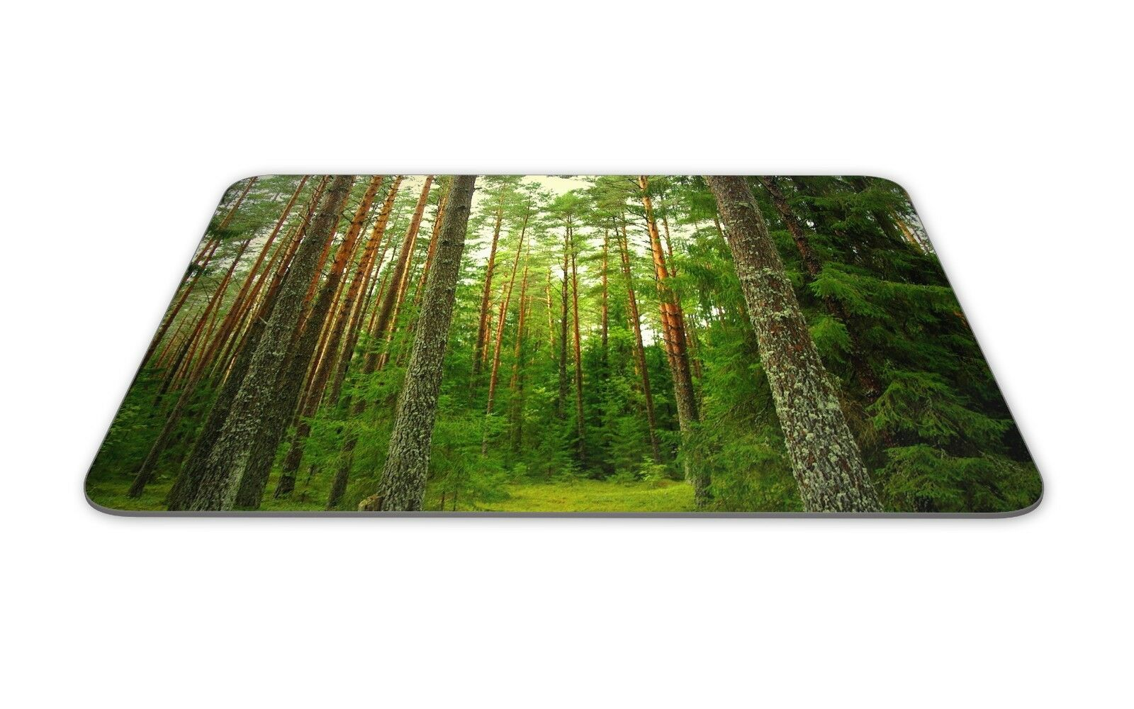 Tree Mouse Pad • Tall Pine Trees Forest Sky Nature Gift Decor Desk Accessory