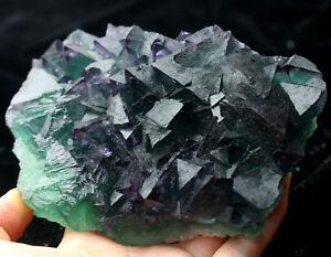 1-6lb-NATURAL-Purple-Green-Octahedr-FLUORITE-Crystal-Cluster-Mineral-Specimen