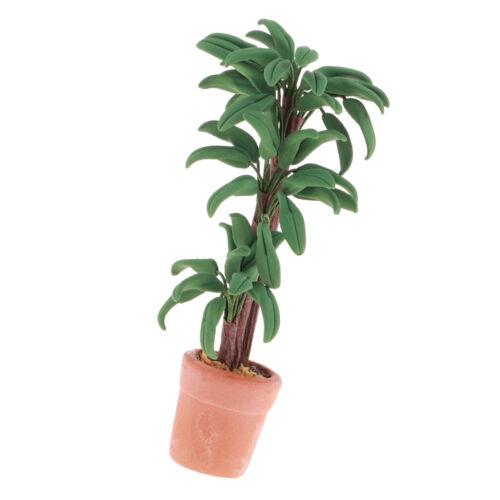 Puppenhaus Mini Braziletto Bonsai Topfpflanze Decor Fairy Garten DIY Accs