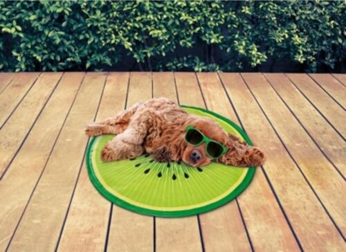 Pet Cooling Fruit Mat Helping To Keep Them Cool and Comfortable In Hot Weather.