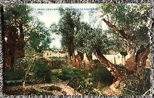 Vintage postcard: Garden of Gethsemane, Jerusalem, Israel