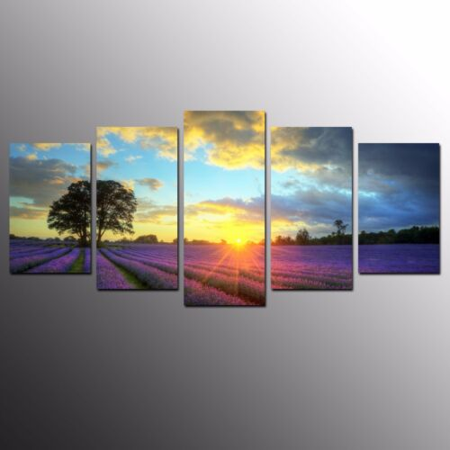 FRAMED Landscape Giclee Canvas Art Print Lavender Garden Wall Art Painting5pcs