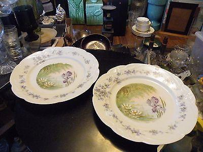 Porcelain Plates Penade Crown Mark Collectibles Smart Pair Of Antique Bavarian Art Nouveau B.r.c