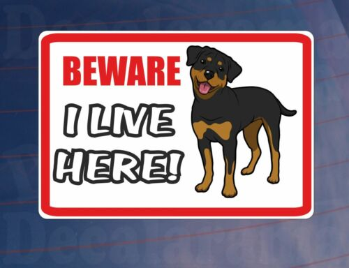 BEWARE I LIVE HERE ROTTWEILER House//Home Window//Door//Porch Printed Sticker