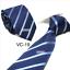 Classic-Red-Black-Blue-Mens-Tie-Paisley-Stripe-Silk-Necktie-Set-Wedding-Jacquard thumbnail 28