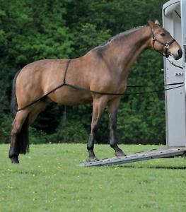 System Zusatz Für Klettern Die Pferde An Van Trailer Anhänger