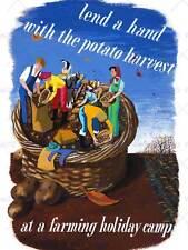 PROPAGANDA POLITICAL ECONOMY YOUTH FRUIT FOOD PRODUCE VIETNAM ART PRINT BB2553B