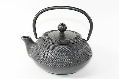 24 fl oz Green Dragonfly Japanese Cast Iron Teapot Tetsubin Infuser Tea Set