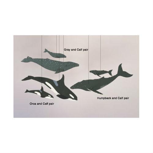 Skyflight Whale Combo Ocean Hanging Baby Educational Classroom Mobile Decor Art