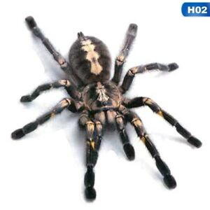 3D-Spider-Car-Sticker-Graphic-Decal-Bumper-Animal-Scary-UK-Seller