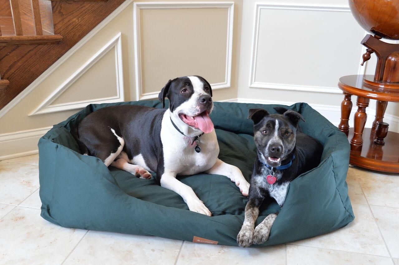 Armarkat XL Dog Pet Bed w Heavy Duty Canvas Waterproof SkidFree Green 49