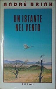 Un-Istante-Nel-Vento-Brink-Andre-Prima-Edizione-1988-Rcs-Mediagroup-1988