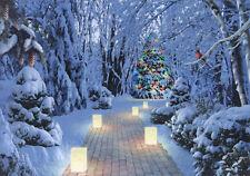 Lighting the Way - Box of 14 LPG Alan Giana Christmas Cards by LPG Greetings