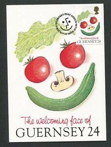 Guernesey Mk 1995 Flore Tomate Champignon Concombre Maximum Carte Maximum Card Mc Cm D9187-afficher Le Titre D'origine
