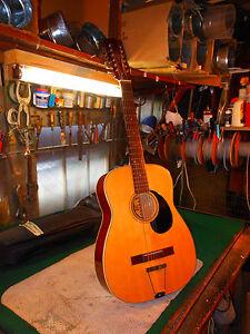 Ventura 12 String Acoustic Guitar V 1590 1960s W Padded Gig Bag