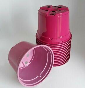 10.5 Cm Rose Plant Pots Rond Léger En Plastique Colorés 4 In (environ 10.16 Cm) 10 To 150 Pots-afficher Le Titre D'origine éConomisez 50-70%