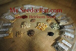 EMERGENCY-HEIRLOOM-SEED-KIT-30-VARIETIES-NON-GMO-FREE-SHIPPING