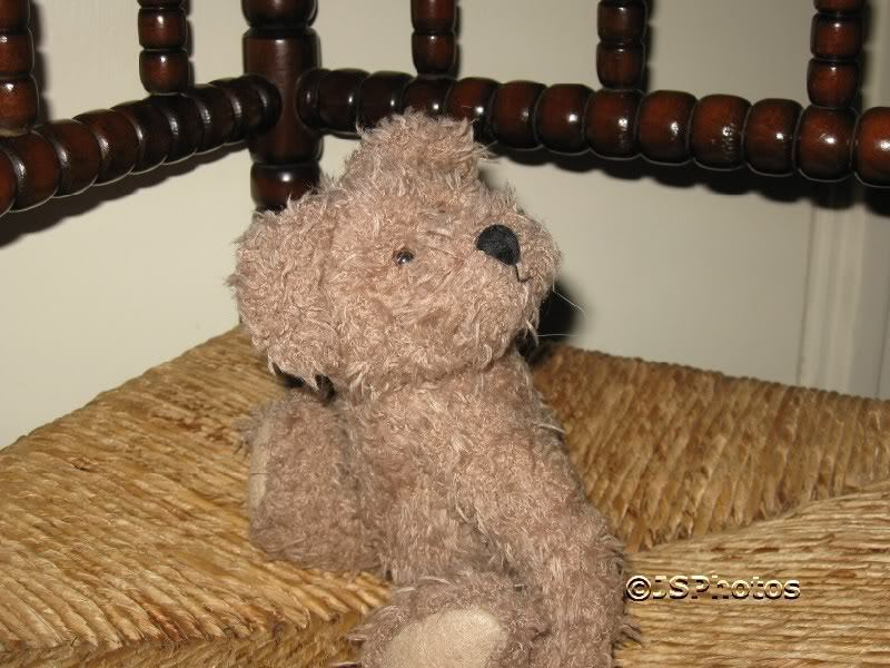 Boyds Collection 1999 J.BBean-Series UK Bear