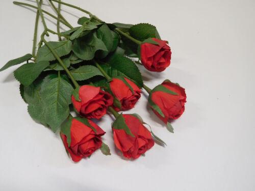 6 X Rose edelrose 6tlg Set De Soie Fleur Art Fleur 43 CM Rouge 11739-3 f7