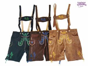 Wunderschoene-kurze-Kinder-Trachten-Lederhose-034-Paul-034-mi-farbigen-Stickereien