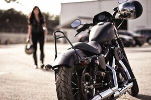 Image Is Loading Sissy Bar Passenger Backrest For Harley Sportster XL