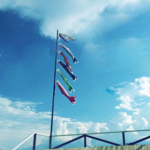 150cm verschiedene japanische Windsack Karpfen Flagge Koi Nobori Segelfisch