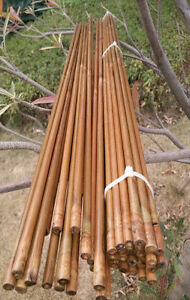 """50x Super Bamboo arrow shafts 39.4/"""" shaft only// varied spine group choice freely"""