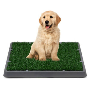 Pet Potty Trainer Grass Mat Dog Puppy Training Pee Patch Pad In/&Outdoor Toilet