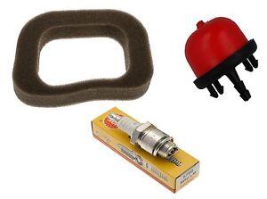 Filtro-De-Aire-Conector-amp-Bombilla-Primer-Service-Kit-compatible-MOUNTFIELD