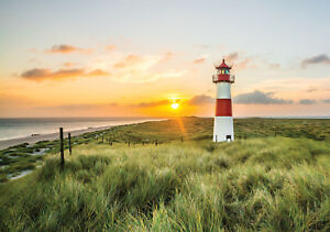 -Meer Beach See Dünen Ozean Küste Bild 2818V VLIES Fototapete-STRAND-LEUCHTTURM