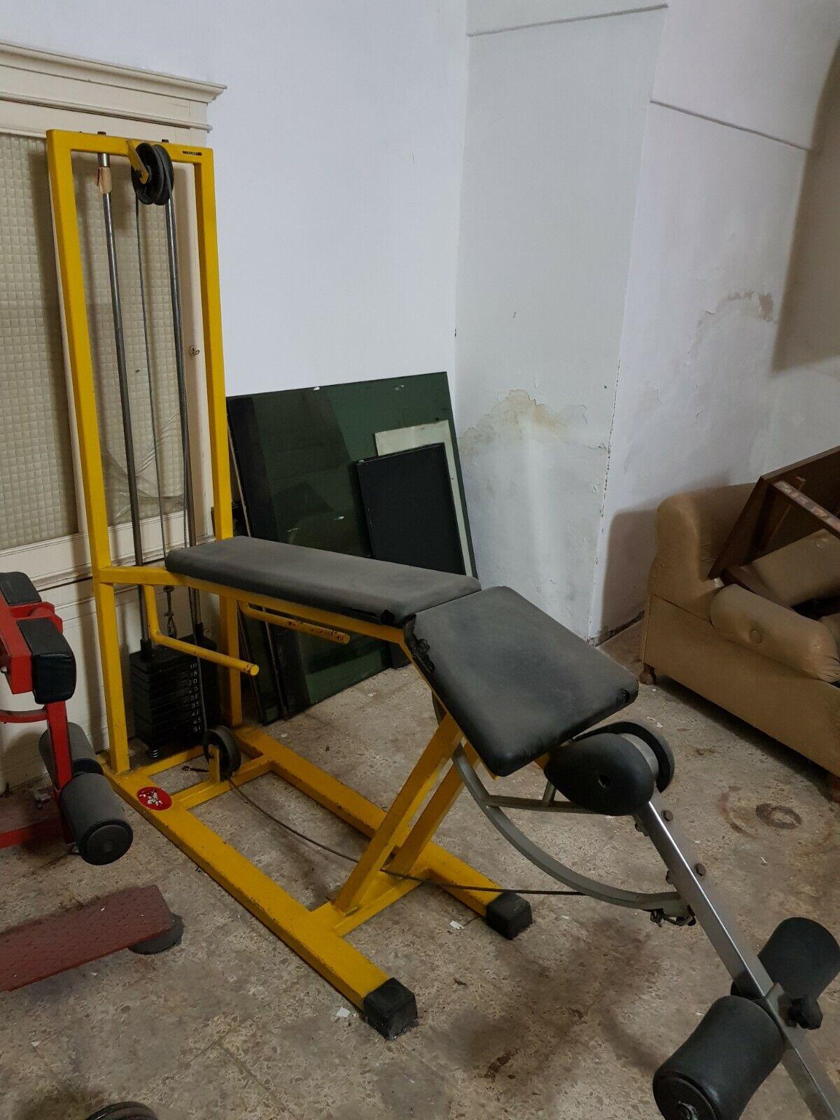 Body building culturismo palestra leg curl serie basic della Panatta Sport