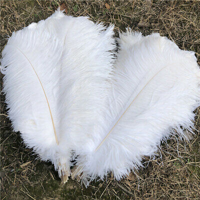 Wholesale 10-100pcs High Quality Natural Ostrich Feathers 6-24inches//15-60cm