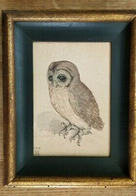 Owl Copper Engraving Fine Art Print//Poster