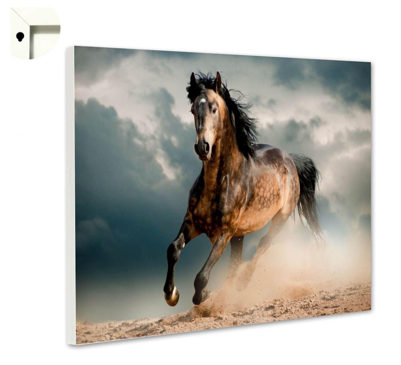 Magnettafel Pinnwand mit Motiv Tiere Pferd Wild Galopp