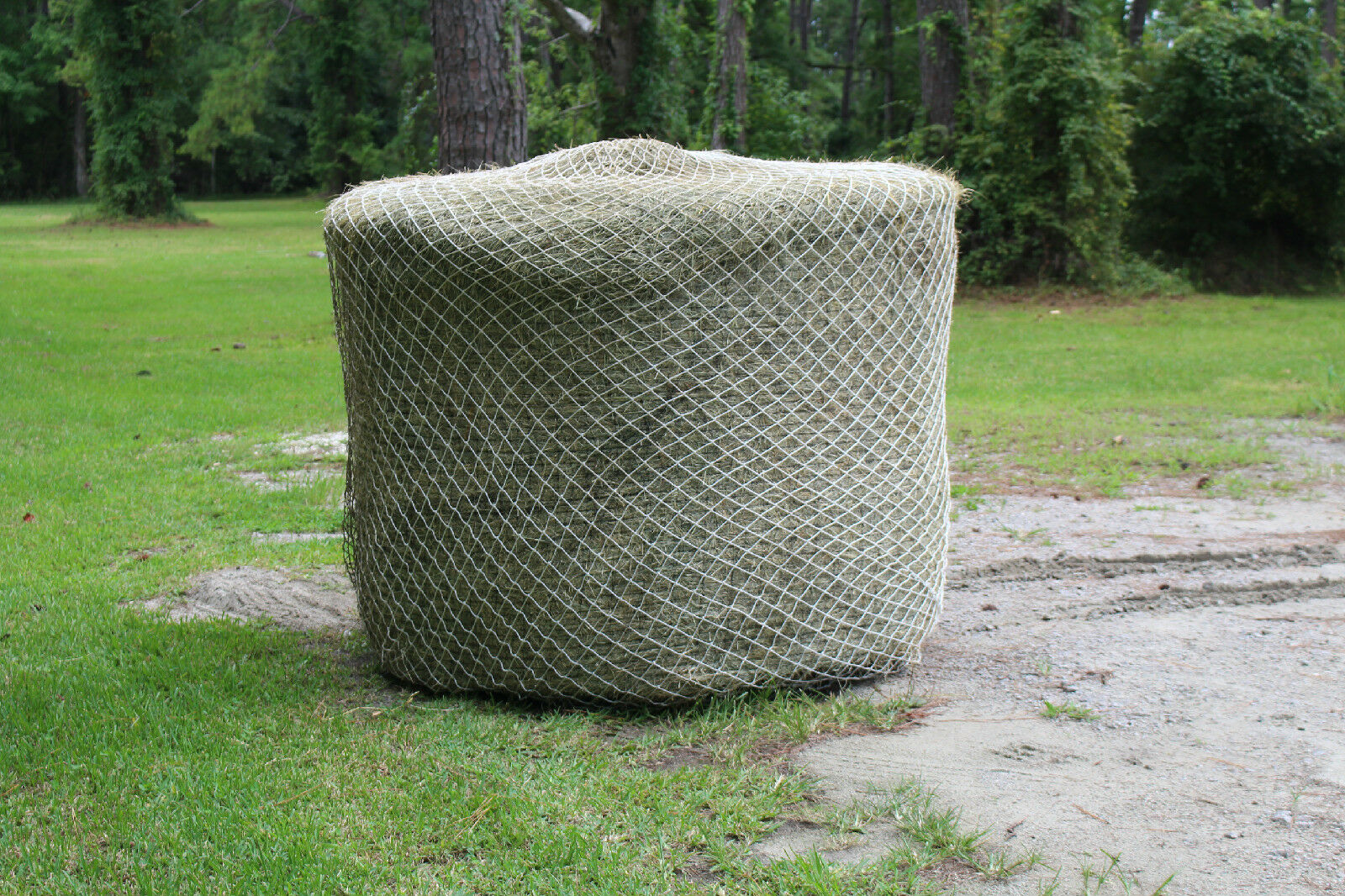 Horse Hay Round Bale Net Feeder Save  Eliminate Waste 4'x 5' Bales Nylon