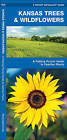 Kansas Trees & Wildflowers: A Folding Pocket Guide to Familiar Species by James Kavanagh (Pamphlet, 2008)