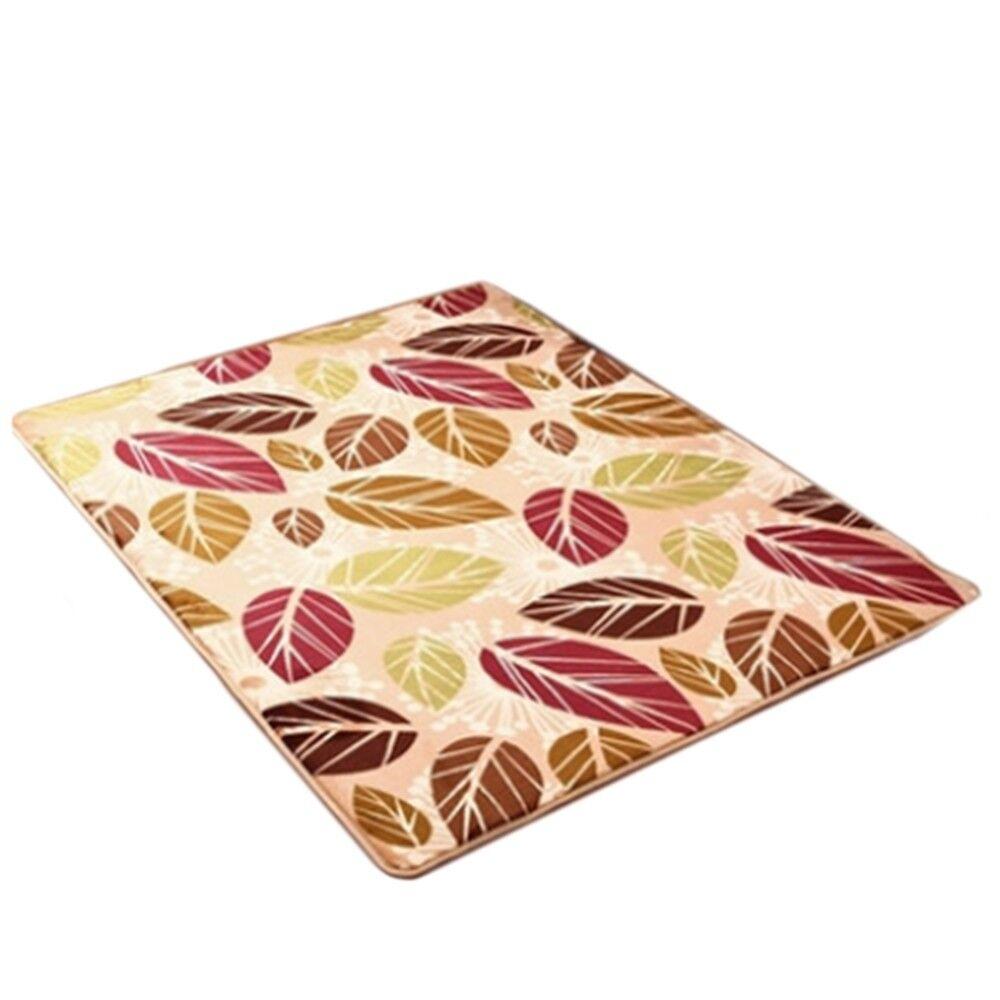 Carpet Coral Fleece Non-slip Door Mat   06  4060cm