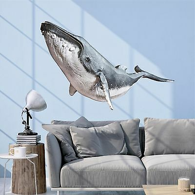 Humpback Whale Wall Decal Vinyl Sticker Graphic Whale Wall Art Nursery Decor Ebay