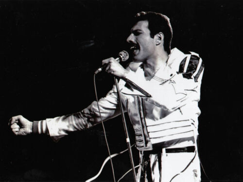 Photo Queen Freddy Mercury 24.9.86 in Der Deutschlandhalle Berlin 17x23cm