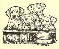 Puppies In A Box, Wood Mounted Rubber Stamp NORTHWOODS - NEW, M9736