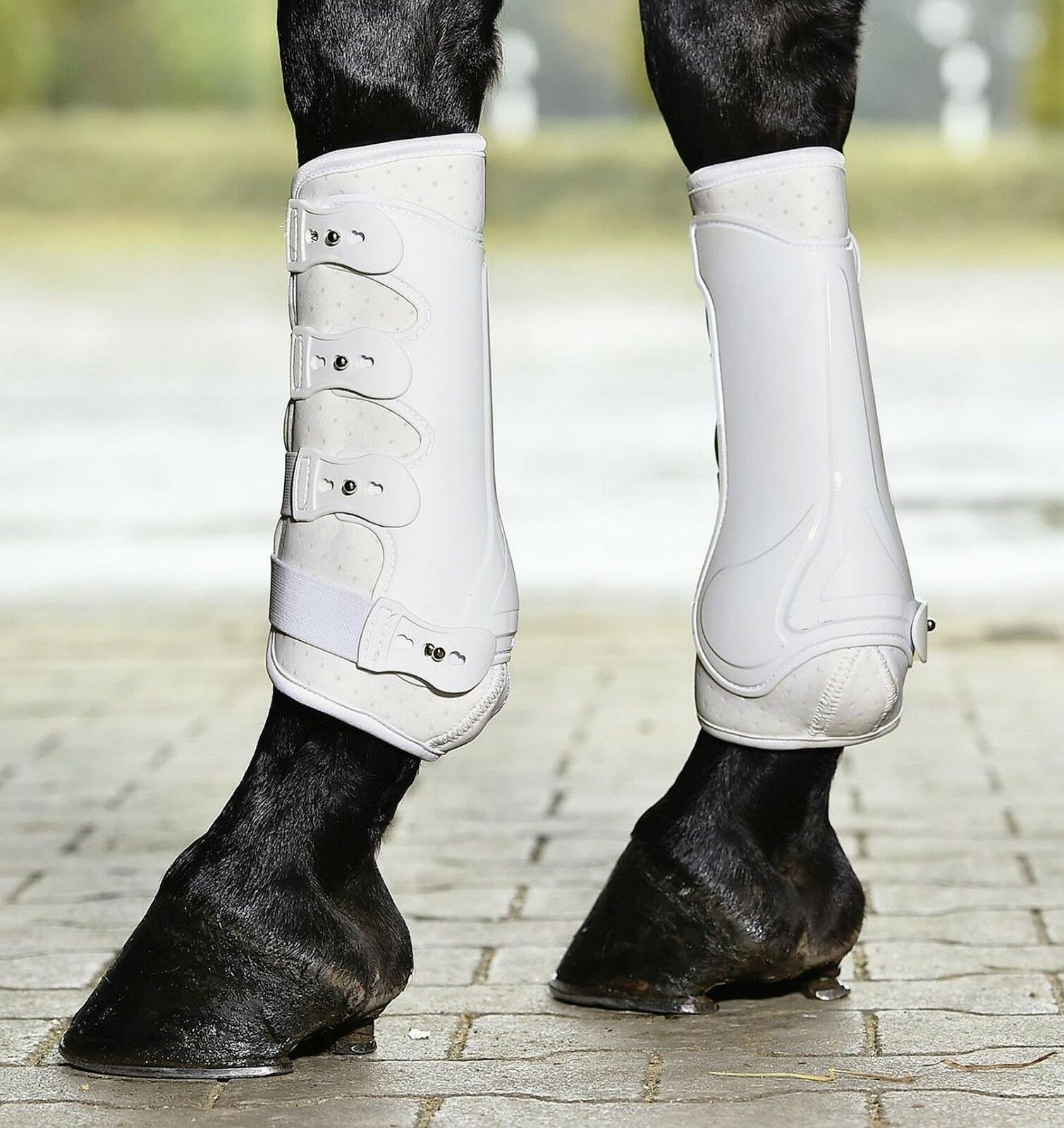 Busse  Dressage Pro Ventilated Flexible Tendon Brushing Boots  clearance up to 70%