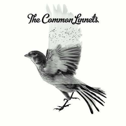 1 von 1 - The Common Linnets - The Common Linnets
