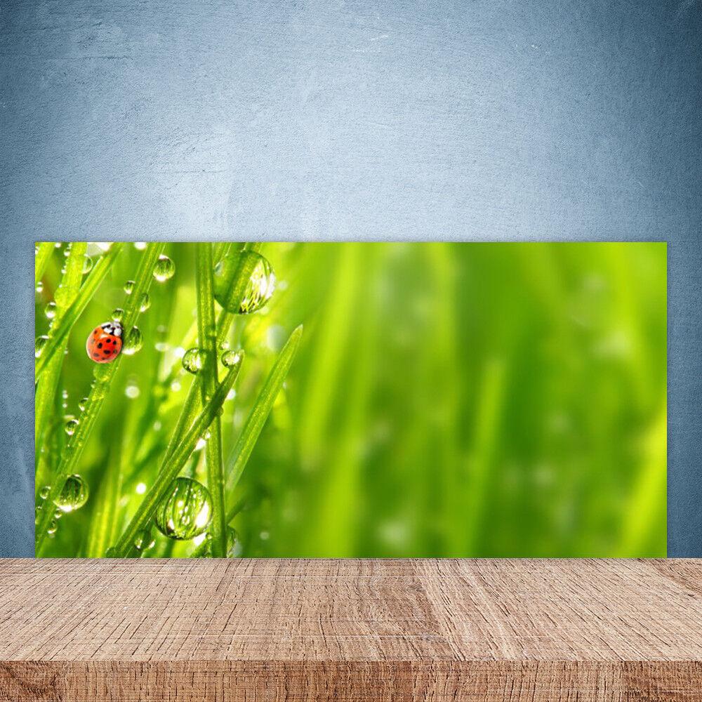 Crédence de cuisine en verre Panneau Paroi 100x50 Nature Herbe Coccinelle