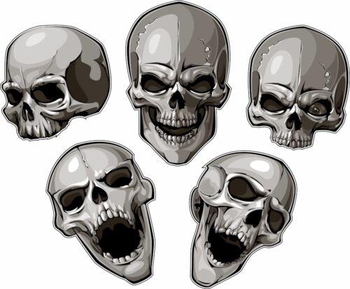 5 Skulls Tool Box Bumper Sticker Vinyl Decal